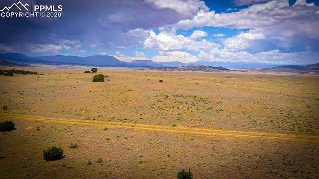 County Road 524 Road, Walsenburg, CO 80189 (#9941874) :: CC Signature Group