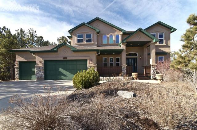 17880 Loverly Way, Monument, CO 80132 (#9942038) :: The Cutting Edge, Realtors