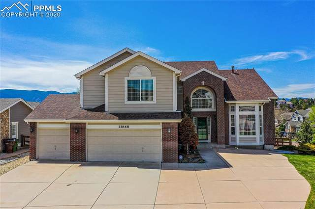 13868 Antelope Pass Place, Colorado Springs, CO 80921 (#9942662) :: Tommy Daly Home Team