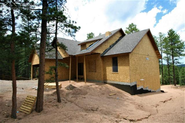 1234 Woodland Valley Ranch Drive, Woodland Park, CO 80863 (#9945320) :: The Dunfee Group - Keller Williams Partners Realty
