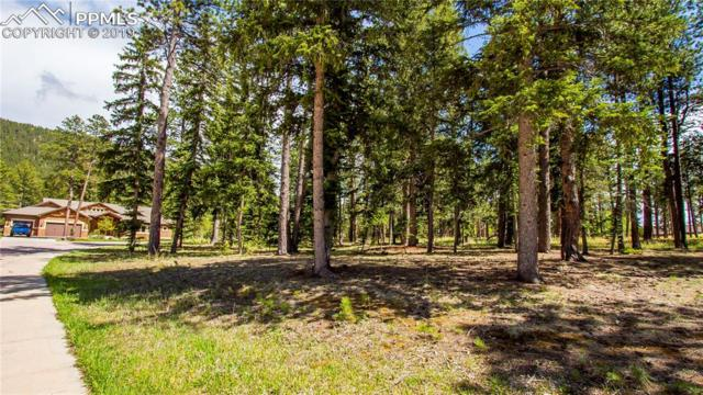 650 Chipmunk Drive, Woodland Park, CO 80863 (#9953396) :: Perfect Properties powered by HomeTrackR