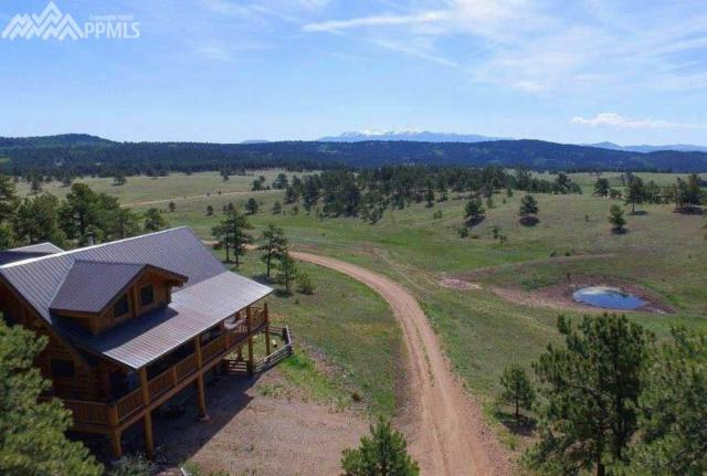 2333 County 403 Road, Florissant, CO 80816 (#9954615) :: The Kibler Group
