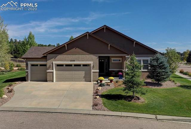 2388 Rusty Ridge Court, Colorado Springs, CO 80921 (#9957044) :: Tommy Daly Home Team