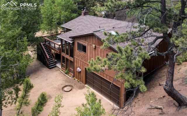 450 Homestead Drive, Woodland Park, CO 80863 (#9958493) :: Jason Daniels & Associates at RE/MAX Millennium