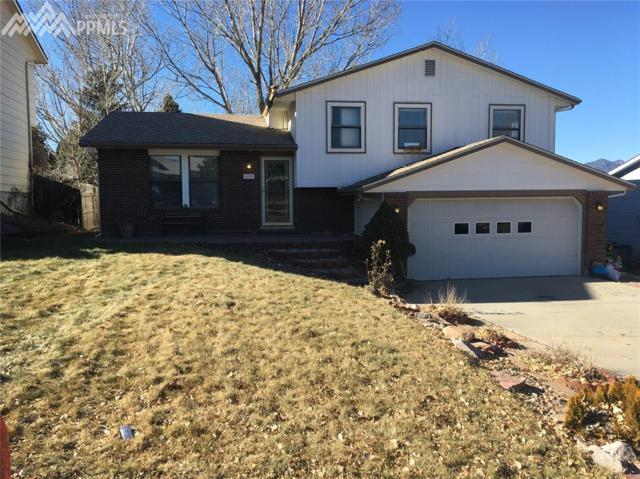6640 Snowbird Drive, Colorado Springs, CO 80918 (#9961167) :: Jason Daniels & Associates at RE/MAX Millennium
