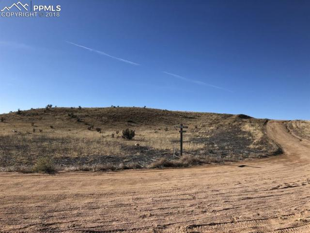 6825 Lakota Point, Fountain, CO 80817 (#9963500) :: Venterra Real Estate LLC
