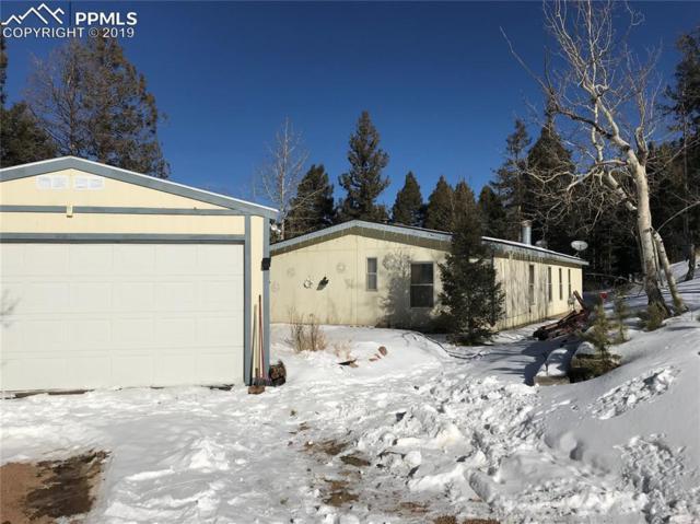 433 Bennett Drive, Cripple Creek, CO 80813 (#9967534) :: CENTURY 21 Curbow Realty