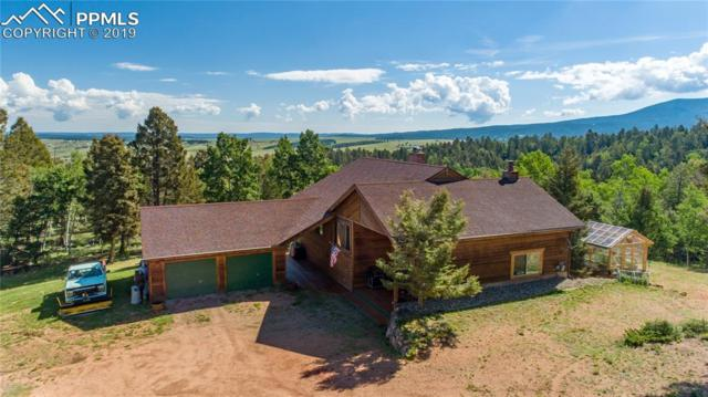 470 Highroad Drive, Divide, CO 80814 (#9973340) :: Action Team Realty