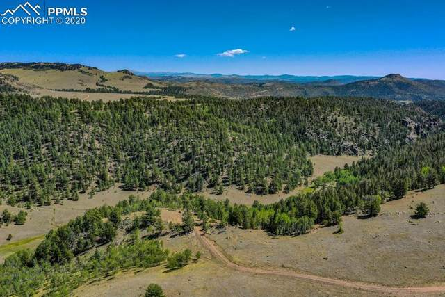 428 Holt Drive, Canon City, CO 81212 (#9974128) :: Action Team Realty
