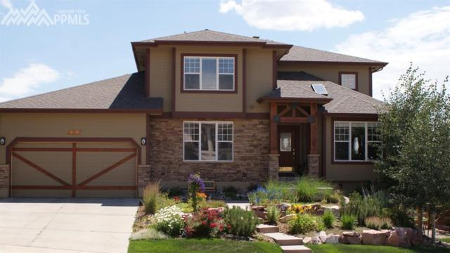 179 Walters Creek Drive, Monument, CO 80132 (#9974600) :: 8z Real Estate