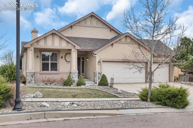 13716 Windy Oaks Road, Colorado Springs, CO 80921 (#9977314) :: Jason Daniels & Associates at RE/MAX Millennium