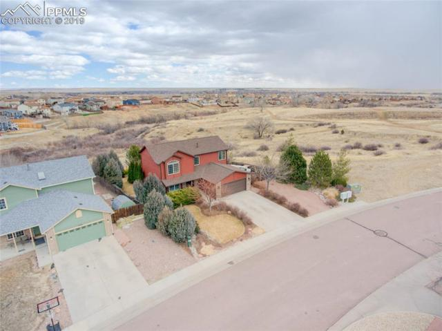 7206 Sue Lane, Colorado Springs, CO 80925 (#9977333) :: Action Team Realty