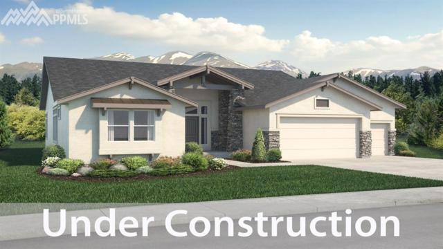 6059 Cerjan Court, Colorado Springs, CO 80924 (#9977523) :: The Treasure Davis Team