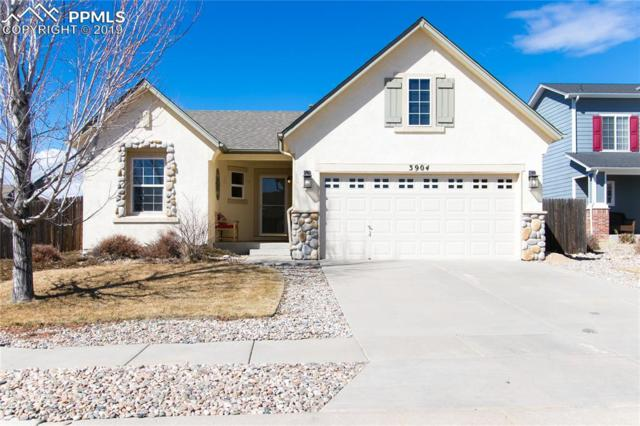 3904 Ranch Bluff Court, Colorado Springs, CO 80922 (#9977741) :: Perfect Properties powered by HomeTrackR