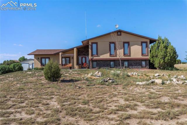 344 E Dee Jay Court, Pueblo West, CO 81007 (#9978088) :: 8z Real Estate