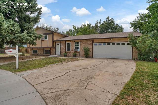 4791 Bunchberry Lane, Colorado Springs, CO 80917 (#9978121) :: Tommy Daly Home Team