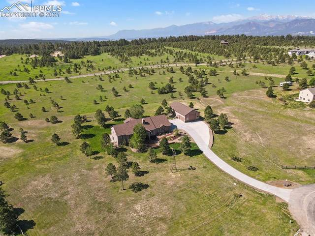 16810 Oldborough Heights, Monument, CO 80132 (#9978785) :: The Kibler Group