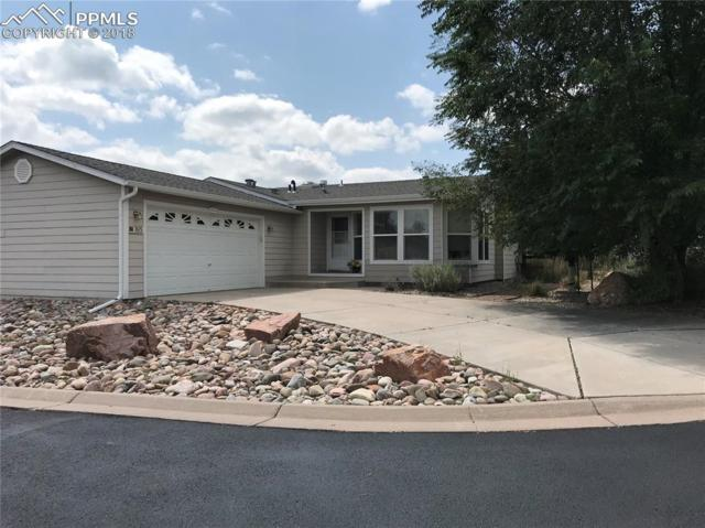 7615 Grizzly Bear Point, Colorado Springs, CO 80922 (#9982098) :: 8z Real Estate