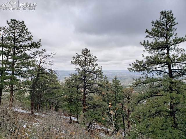 1368 Mica Lane, Colorado Springs, CO 80906 (#9985423) :: Action Team Realty