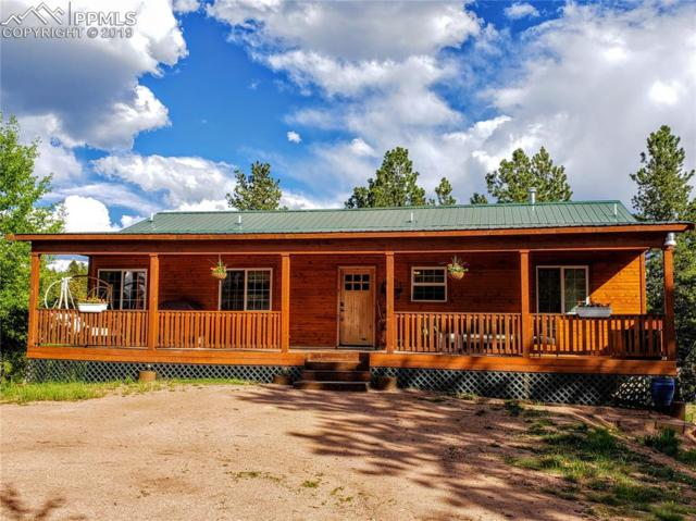 62 Spring Creek Drive, Divide, CO 80814 (#9989424) :: Action Team Realty