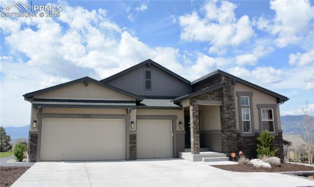 12638 Chianti Court, Colorado Springs, CO 80921 (#9992475) :: Action Team Realty