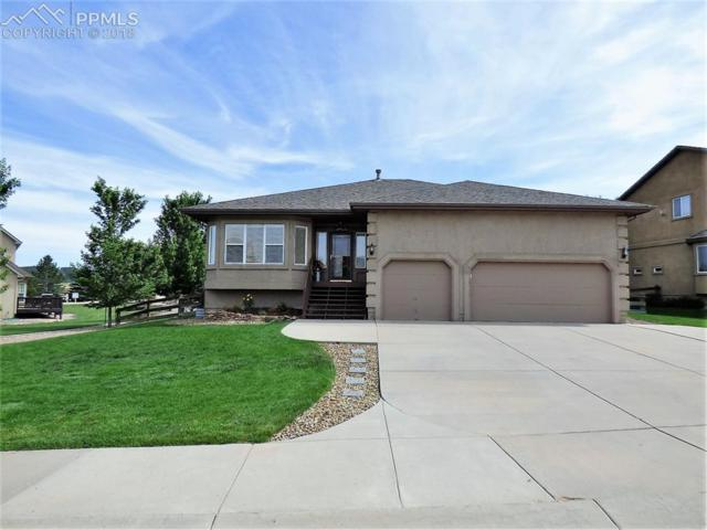 280 Green Rock Place, Monument, CO 80132 (#9994194) :: The Hunstiger Team
