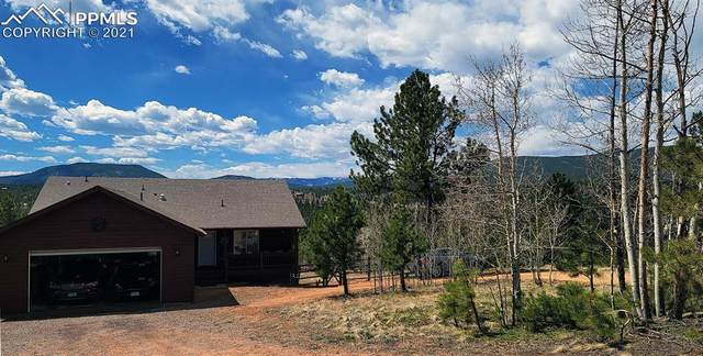 154 Sunset Drive, Bailey, CO 80421 (#9996492) :: The Daniels Team