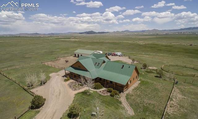 3050 County 137 Road, Westcliffe, CO 81252 (#9997535) :: The Treasure Davis Team