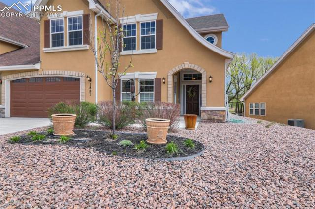 1881 Bel Lago View, Monument, CO 80132 (#1013666) :: Action Team Realty