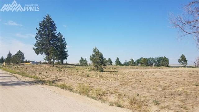 619 Pueblo Avenue, Simla, CO 80835 (#1021468) :: 8z Real Estate