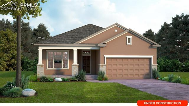 6226 Rowdy Drive, Colorado Springs, CO 80924 (#1023947) :: Harling Real Estate