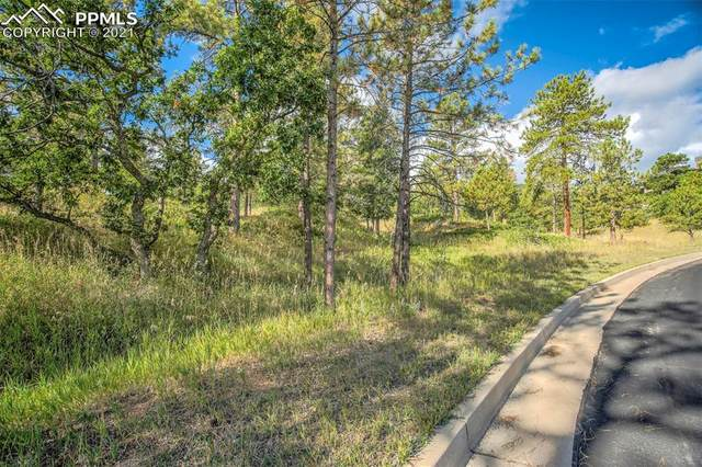 2405 Stratton Forest Heights, Colorado Springs, CO 80906 (#1027113) :: The Gold Medal Team with RE/MAX Properties, Inc
