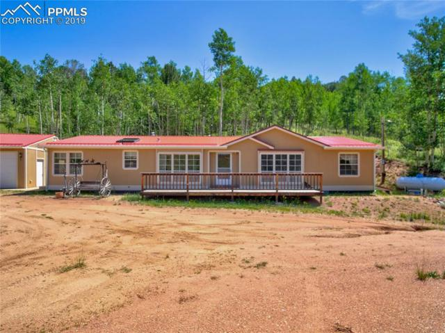 64 Grey Eagle Way, Cripple Creek, CO 80813 (#1043352) :: Jason Daniels & Associates at RE/MAX Millennium