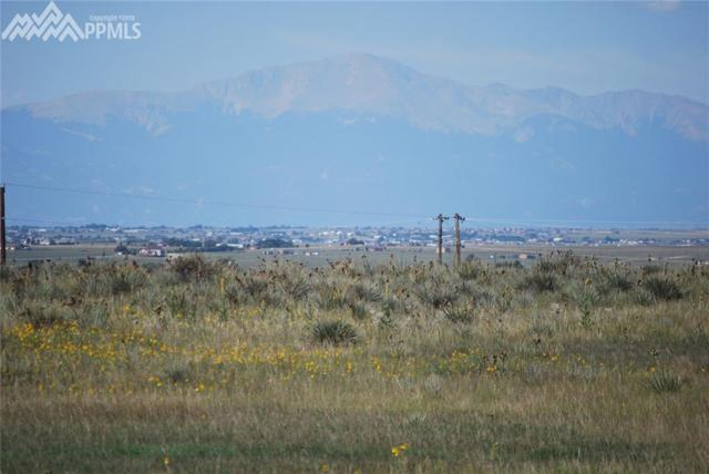13020 Bucking Horse Road, Calhan, CO 80808 (#1045304) :: 8z Real Estate