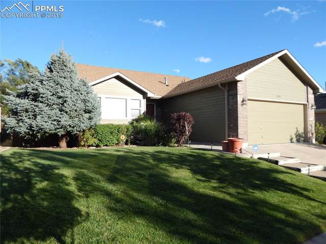 5515 Flag Way, Colorado Springs, CO 80919 (#1046095) :: Tommy Daly Home Team