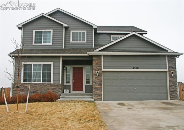 4560 Sierra Rica Road, Colorado Springs, CO 80911 (#1047311) :: Venterra Real Estate LLC