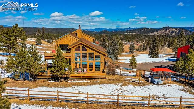 99 Debbie Circle, Woodland Park, CO 80863 (#1048810) :: Finch & Gable Real Estate Co.