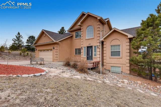 490 Lone Horn Point, Monument, CO 80132 (#1062090) :: The Daniels Team