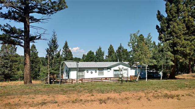 5530 Skycrest Drive, Divide, CO 80816 (#1070379) :: 8z Real Estate