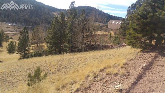 902 Copper Mountain Drive, Cripple Creek, CO 80813 (#1072363) :: The Treasure Davis Team