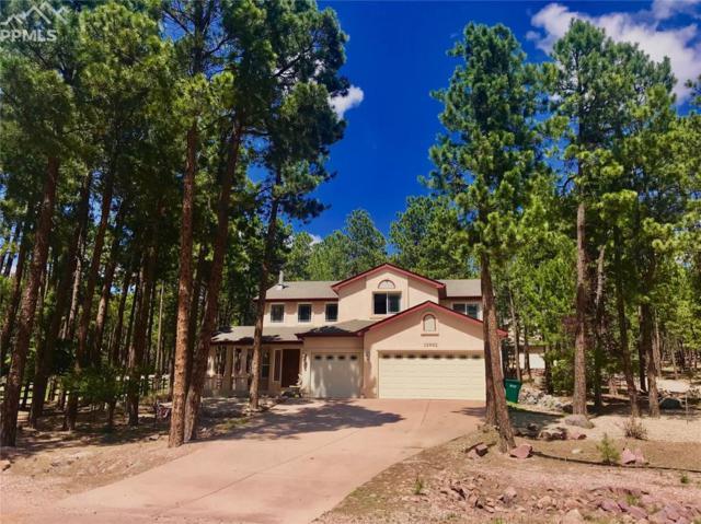 15992 Longmeadow Lane, Colorado Springs, CO 80921 (#1093981) :: The Peak Properties Group
