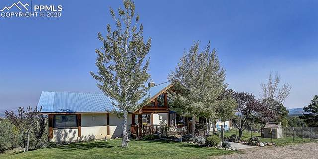 334 Cottonwood Trail, Cotopaxi, CO 81223 (#1121505) :: 8z Real Estate