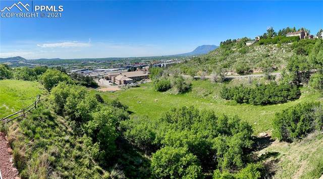 5025 Vista Del Ore Point, Colorado Springs, CO 80919 (#1130198) :: The Gold Medal Team with RE/MAX Properties, Inc