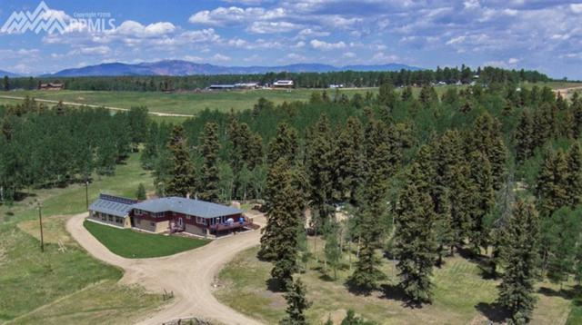 391 County 51 Road, Divide, CO 80814 (#1150935) :: Jason Daniels & Associates at RE/MAX Millennium