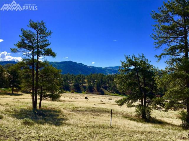 341 Surrey Lane, Florissant, CO 80816 (#1165947) :: 8z Real Estate