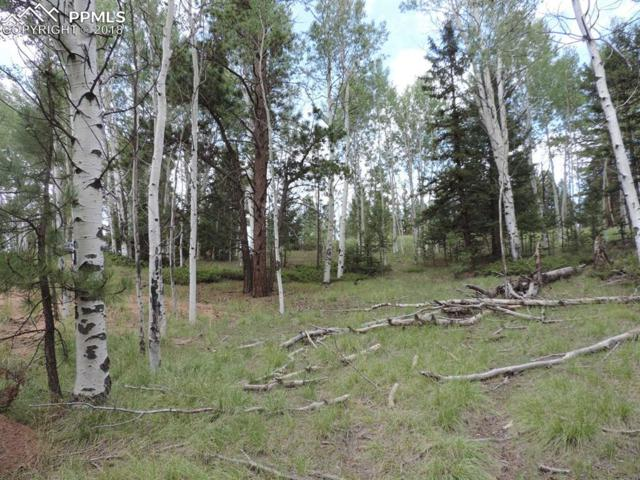 524 Pinewood Road, Florissant, CO 80816 (#1172334) :: Harling Real Estate