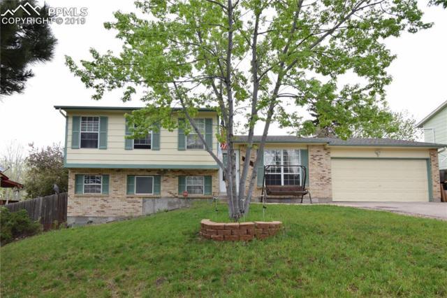 6645 Buffalo Drive, Colorado Springs, CO 80918 (#1197102) :: Venterra Real Estate LLC