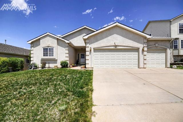 2320 Pinhigh Court, Colorado Springs, CO 80907 (#1225595) :: 8z Real Estate