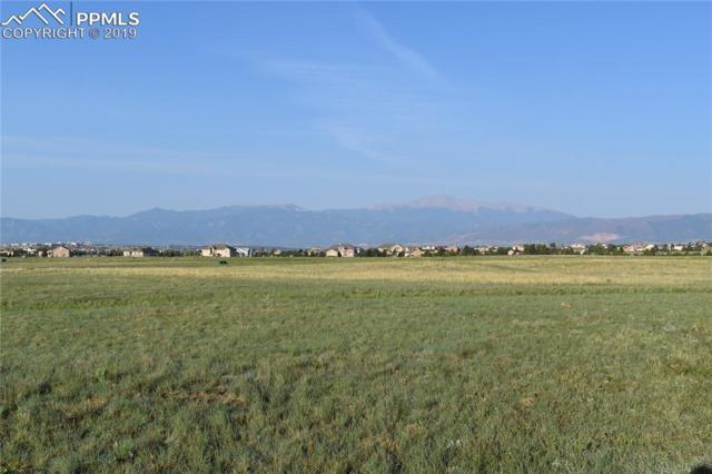 7730 Rannoch Moor Way, Colorado Springs, CO 80908 (#1240585) :: 8z Real Estate