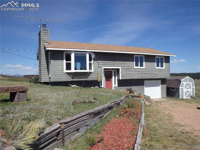 119 Will Scarlet Drive, Divide, CO 80814 (#1245561) :: The Kibler Group